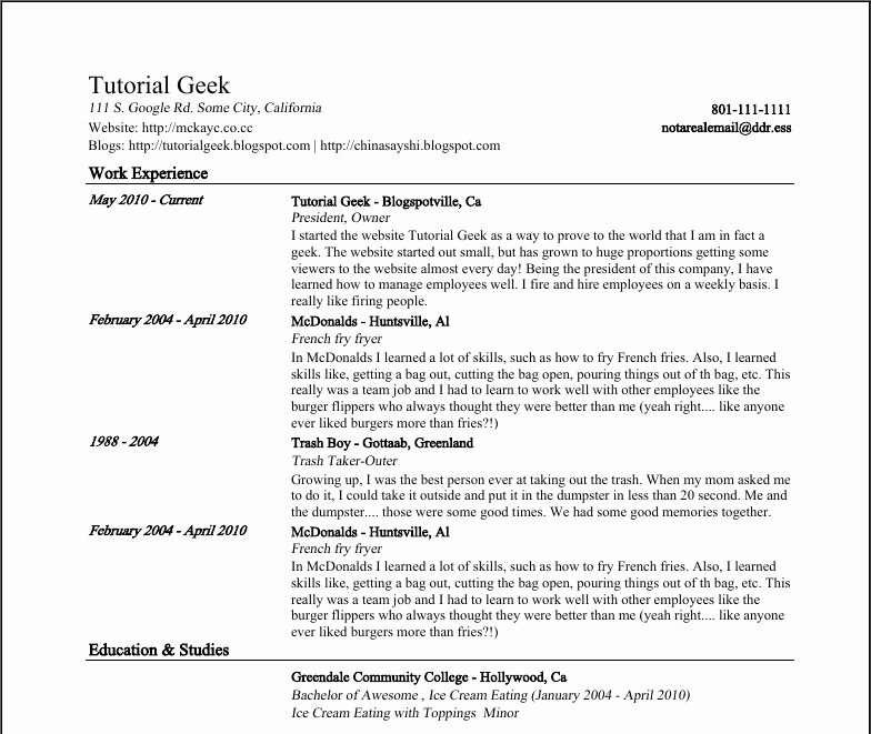 Resume Template Google Docs Beepmunk