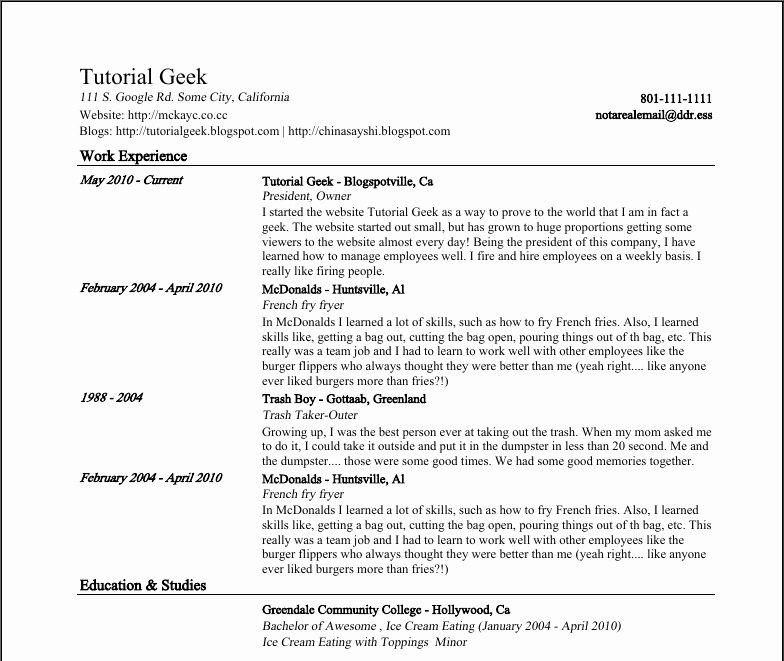 Resume Template Google Docs Beepmunk