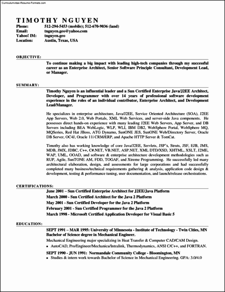 Resume Template In Microsoft Word 2007 Free Samples