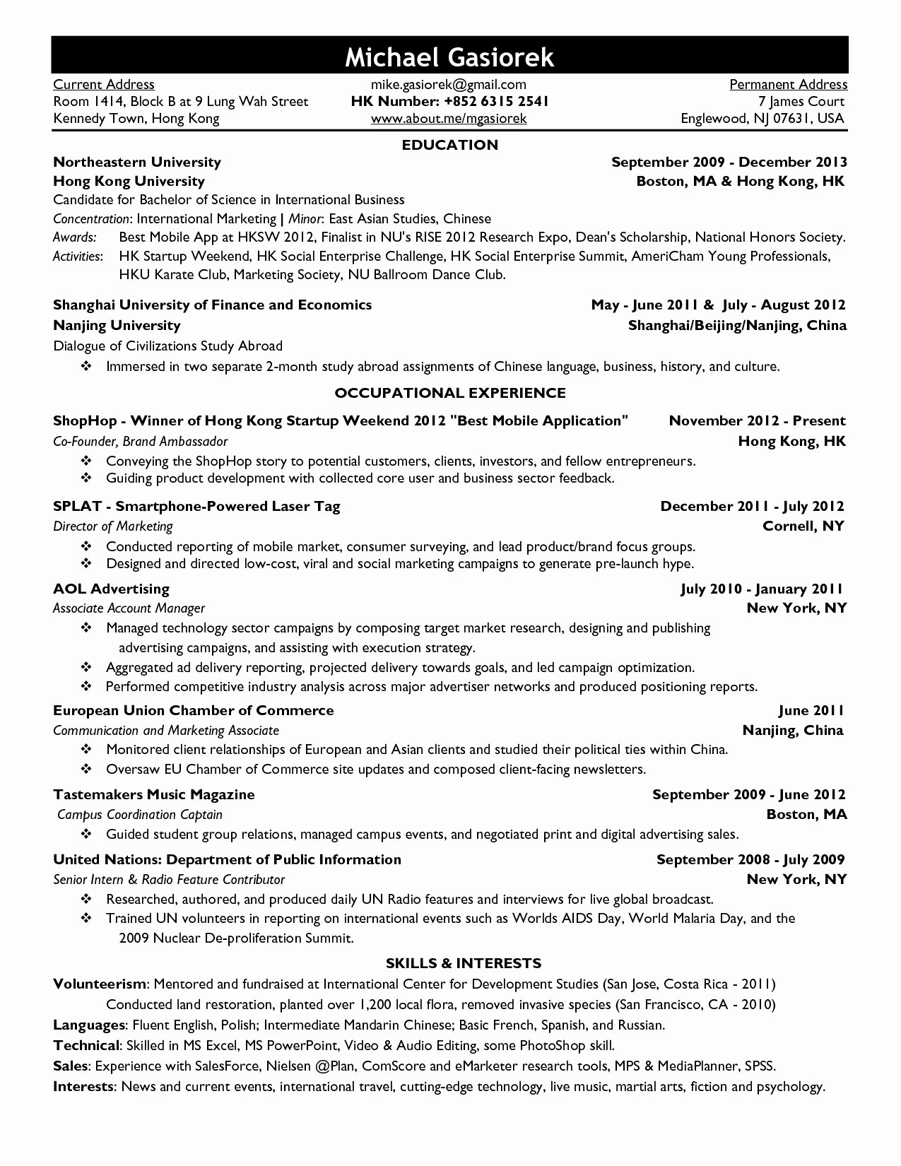 Resume Template Professional 2013 with Regard to