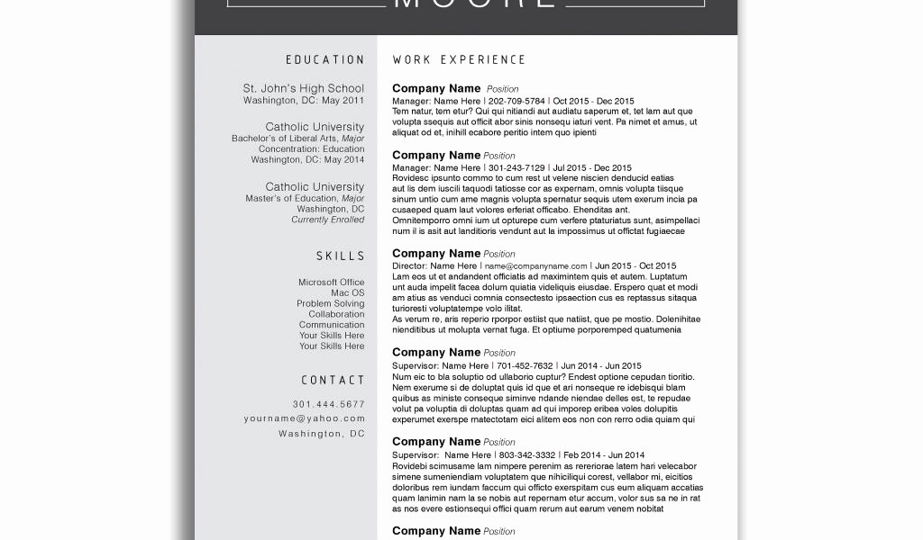 Resume Templates for Pages Free