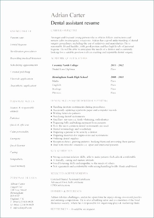 Resume Templates Google Docs In English Sample Google Docs