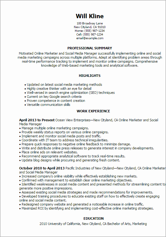 Resume Templates Line Marketer and social Media