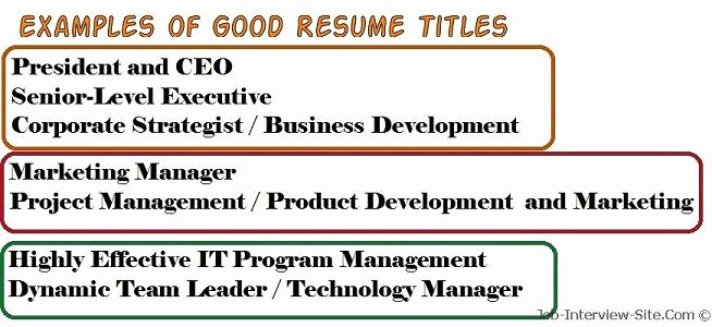 Resume Title Examples Of Resume Titles