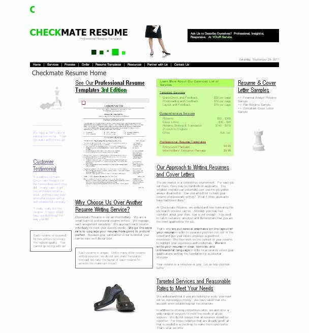 Review Of Resume Writing Service Checkmateresume