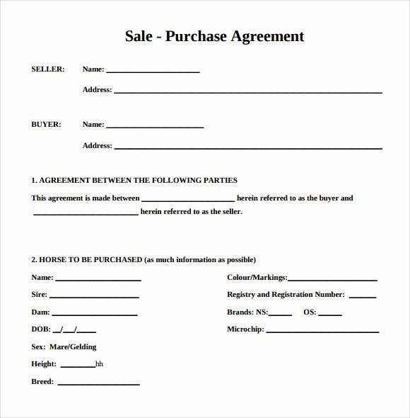 Sale and Purchase Agreement Contract Letter Template