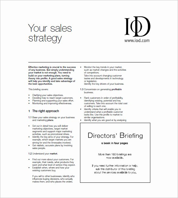 Sales and Marketing Plan Templates – 19 Free Word Excel