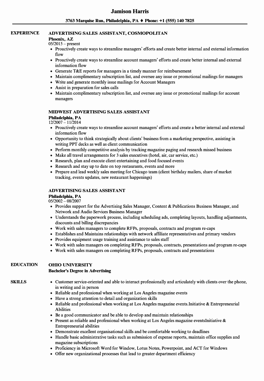 Sales assistant Job Description Template Gallery