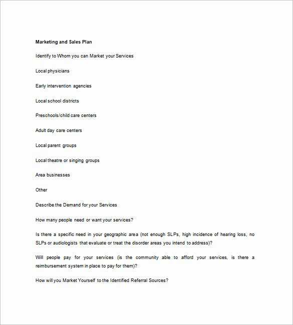 Sales Business Plan Template 12 Word Excel Pdf format