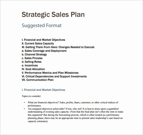 Sales Plan Template 23 Free Sample Example format