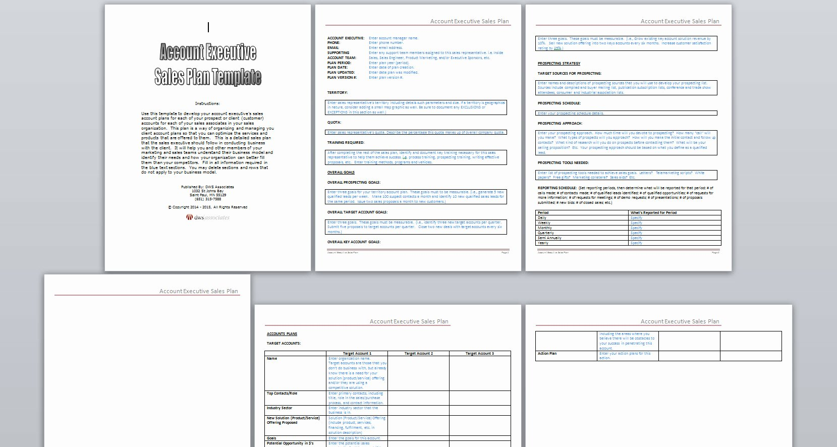 Sales Plan Template Resume Trakore Document Templates