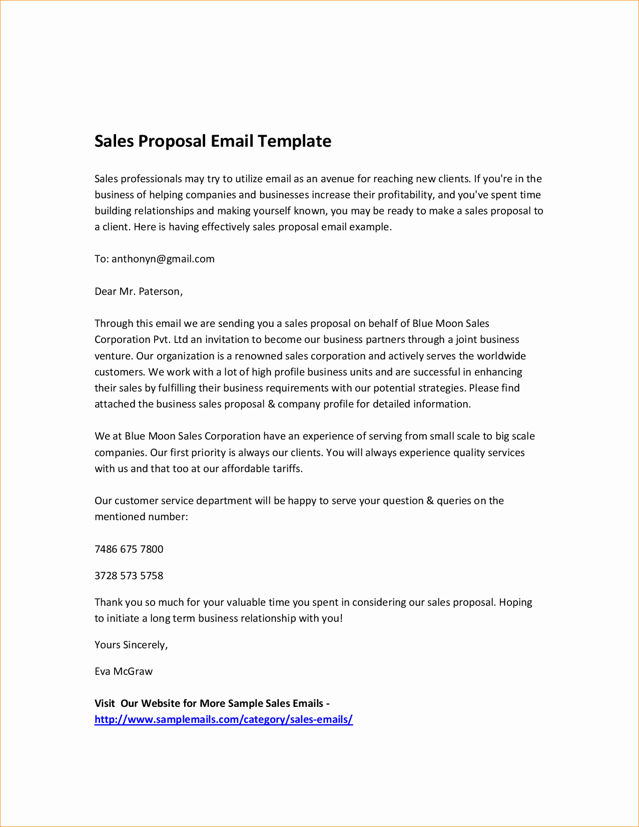 Sales Proposal Template Business Proposal Templated