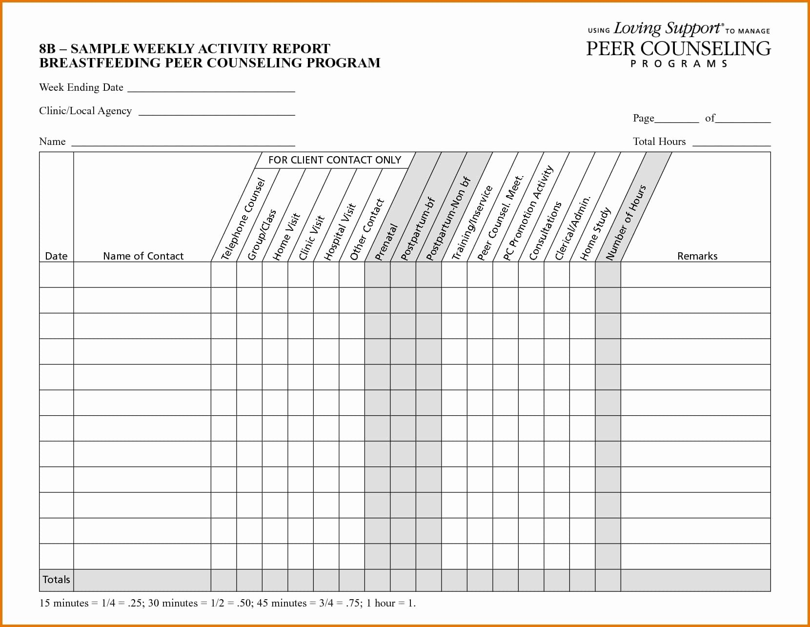 Sales Visit Report Template Portablegasgrillweber