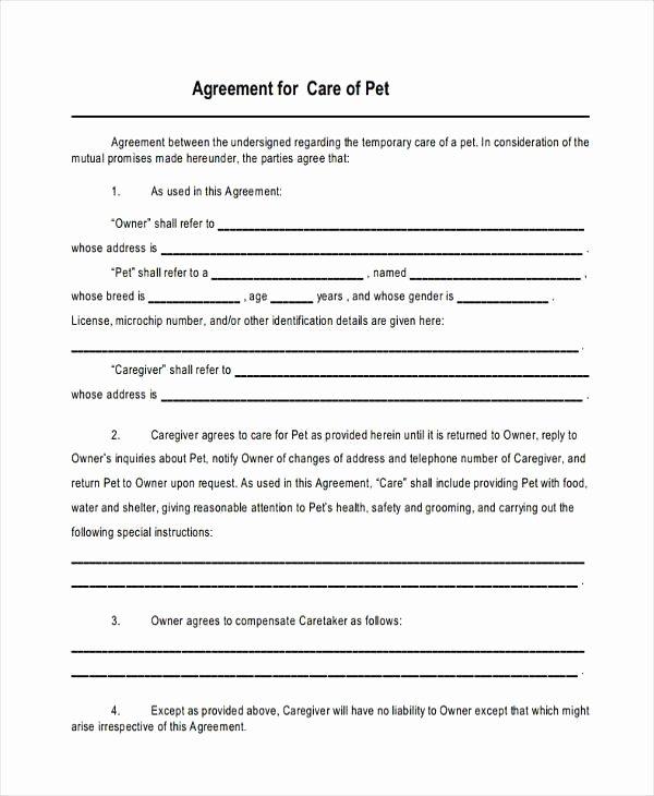 Sample Child Custody Agreement Unique Voluntary Child Support