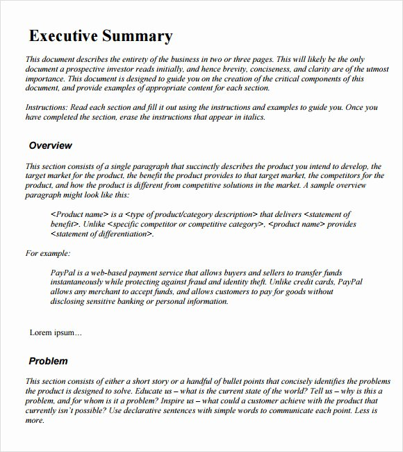 Sample Executive Summary Template 12 Documents In Pdf