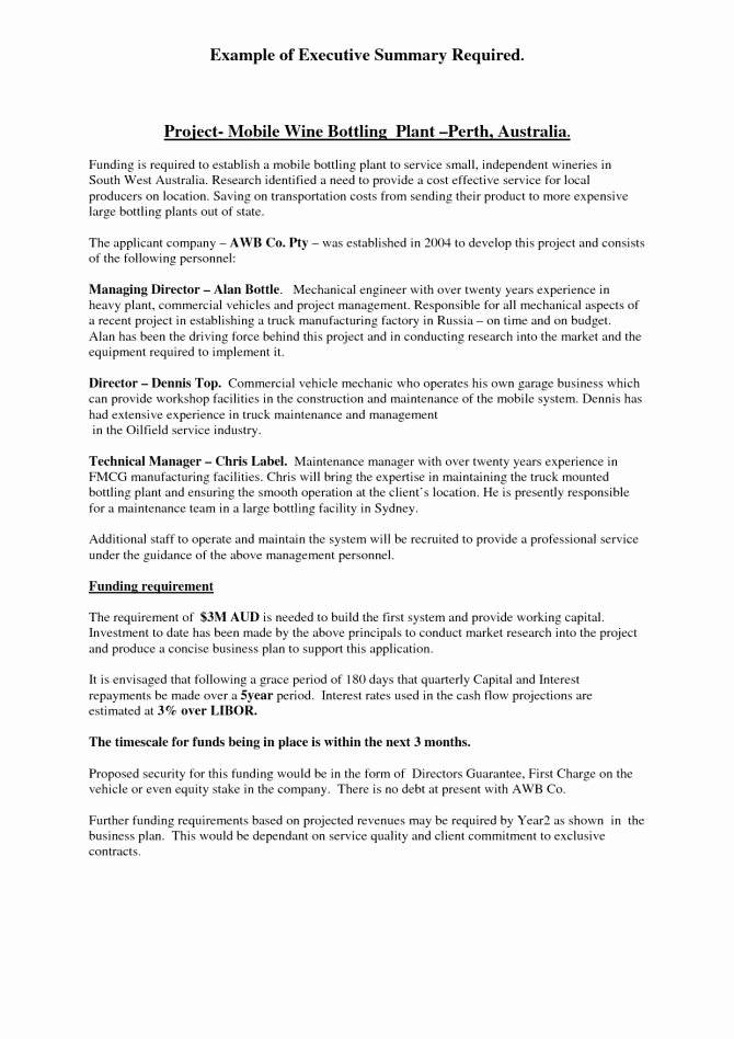 Sample Executive Summaryple Reportples Business Plan