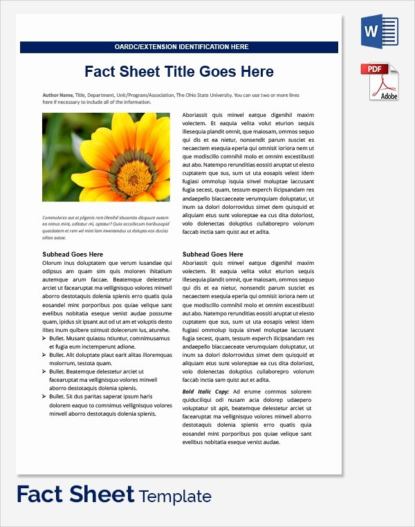 Sample Fact Sheet Template 21 Free Download Documents