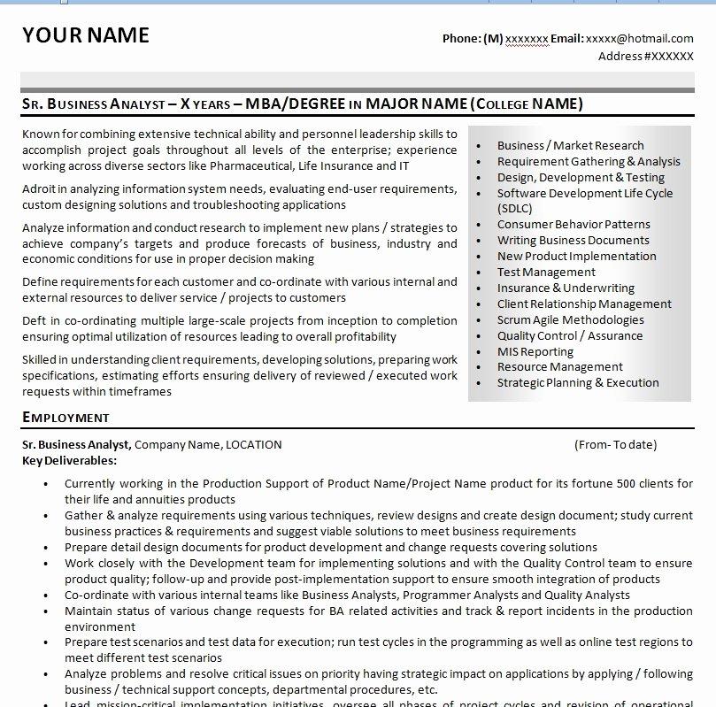 Sample It Business Analyst Resume Cv