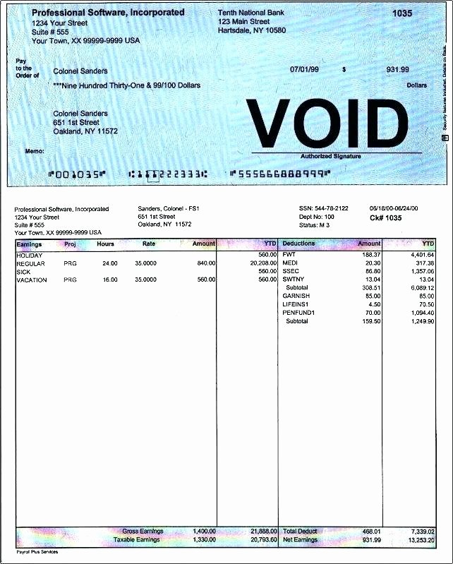 Sample Leave and Earning Statement Template Pay Stub for