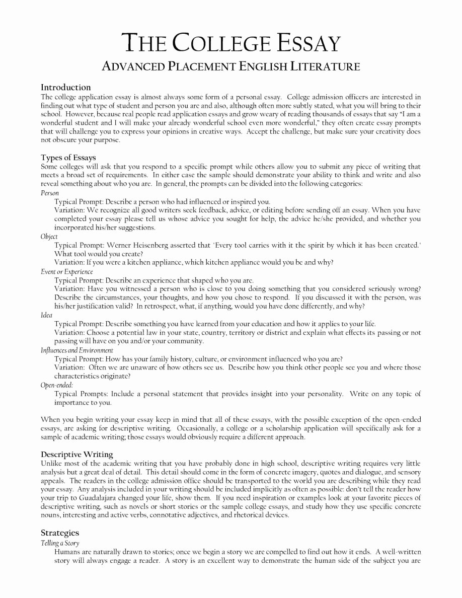 Sample Literature Essay Outline Character Analysis Essay