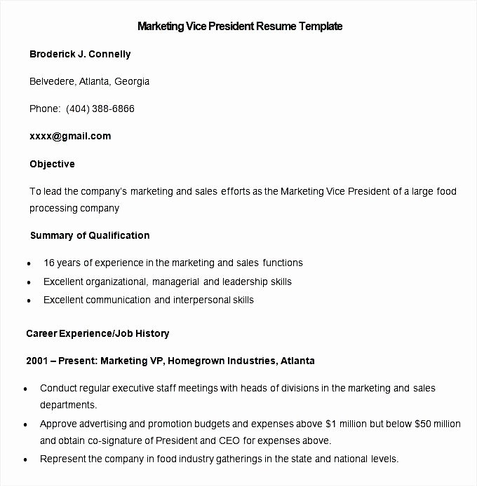 Sample Marketing Vice President Resume Template Free