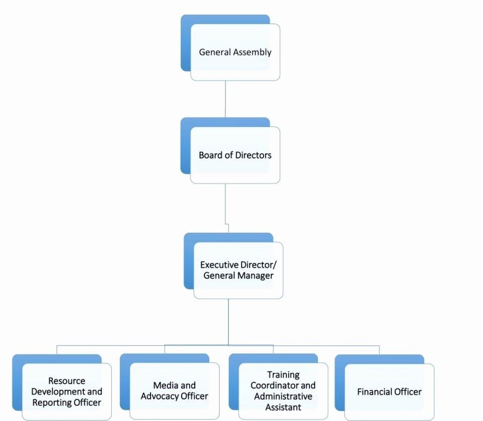 Sample org Chart Template Ukran Agdiffusion I9ml58iy