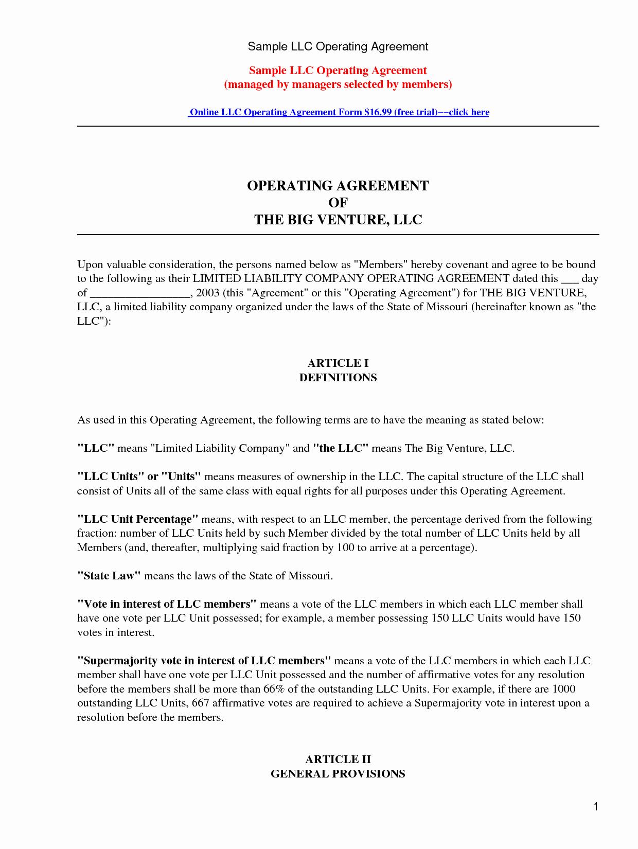 Sample Partnership Agreement form Portablegasgrillweber