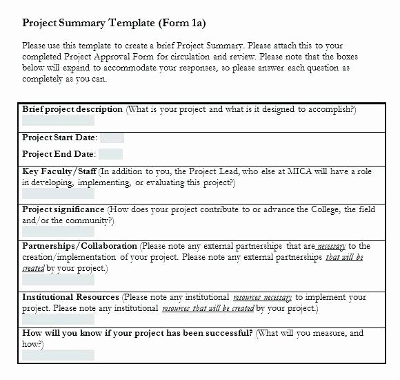 Sample Project Summary Template