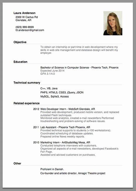 Sample Resume for Job Application