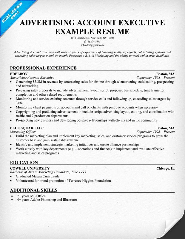 Sample Resume format Accounts Executive
