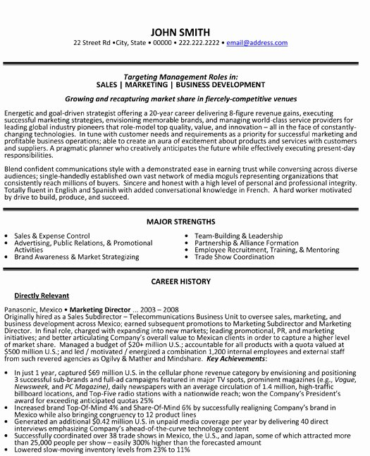 Sample Resume Of Marketing Professional