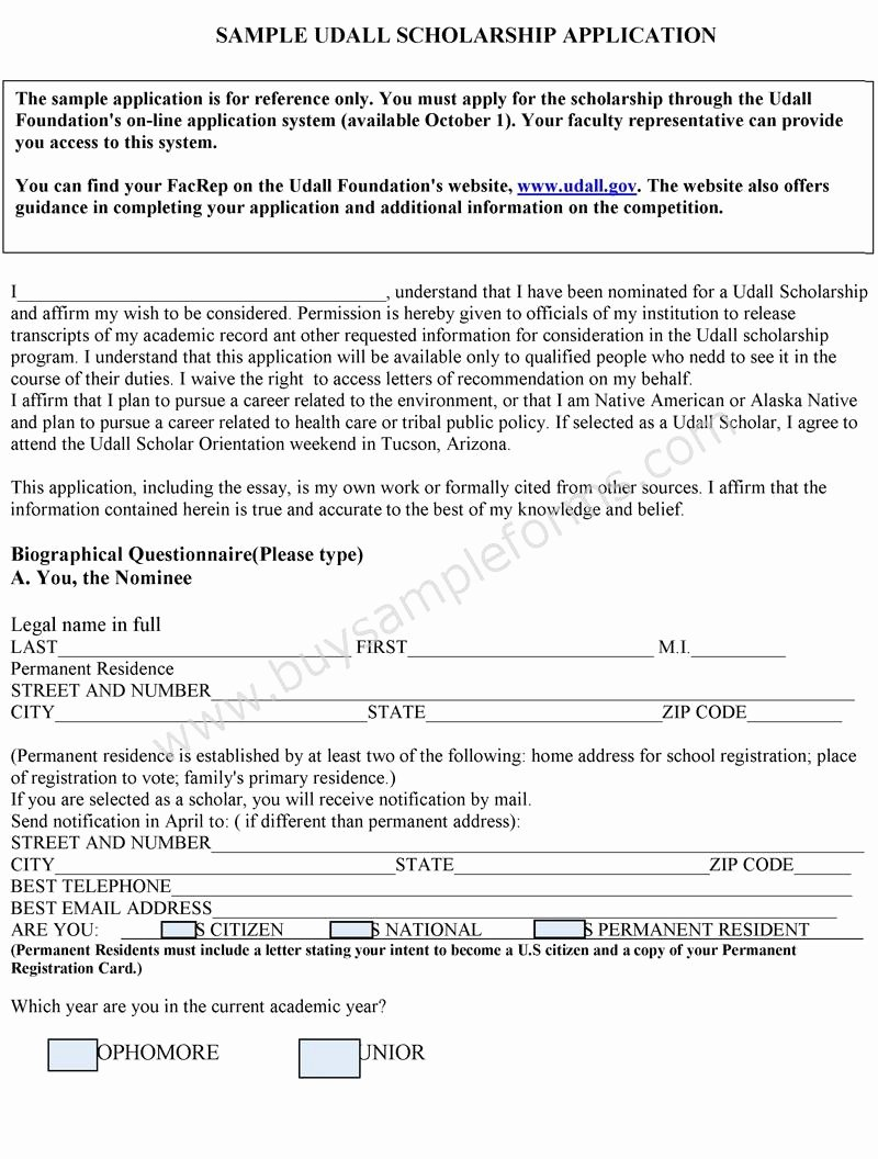 Scholarship Application format