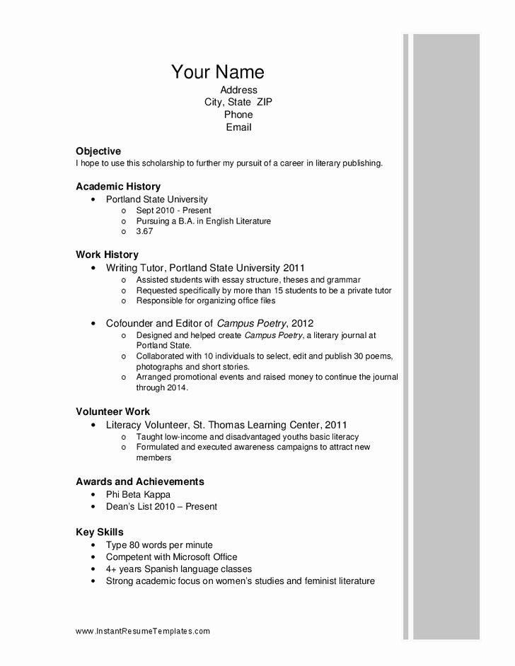 Scholarship Resume Templates Best Resume Collection