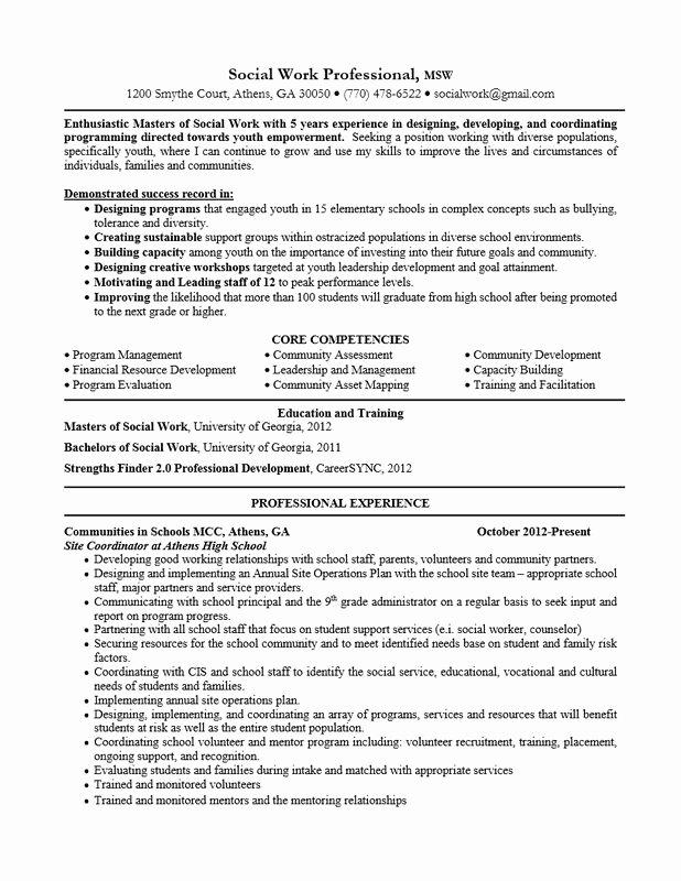 School social Work Resume Best Resume Collection
