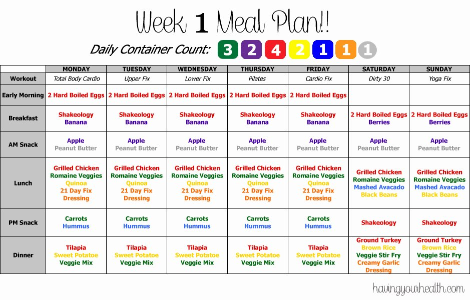 image relating to 21 Day Fix Printable Meal Planner called 21 Working day Mend Calendar Template Latter Case in point Template
