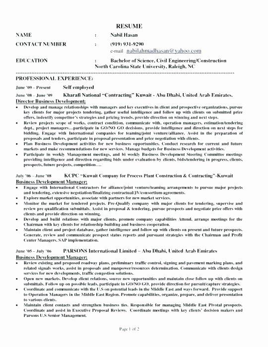 Self Employed Resume Samples Handyman Sample Resume Self