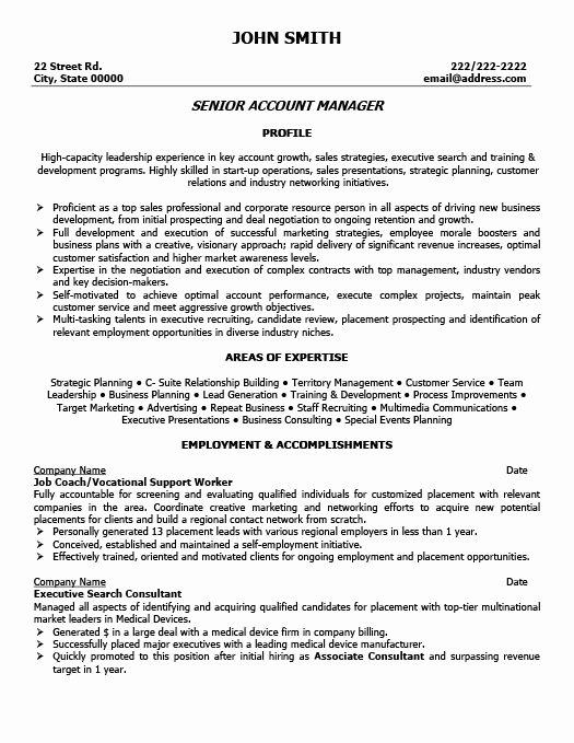 Senior Account Manager Resume Icebergcoworking