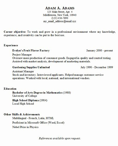 Simple Job Resume Examples
