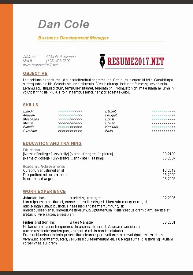 Simple Resume Builder 2017