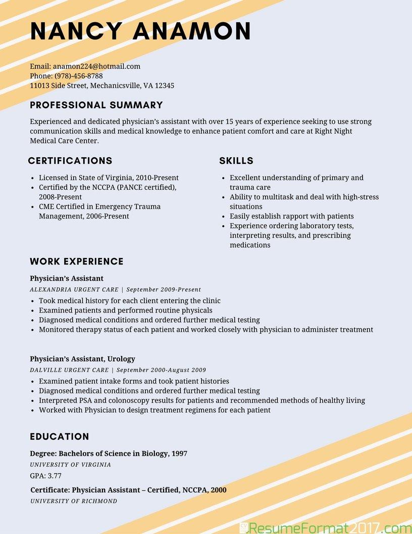 Simple Resume Template 2017