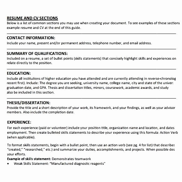 Simple Student Cv Example Free Samples Examples
