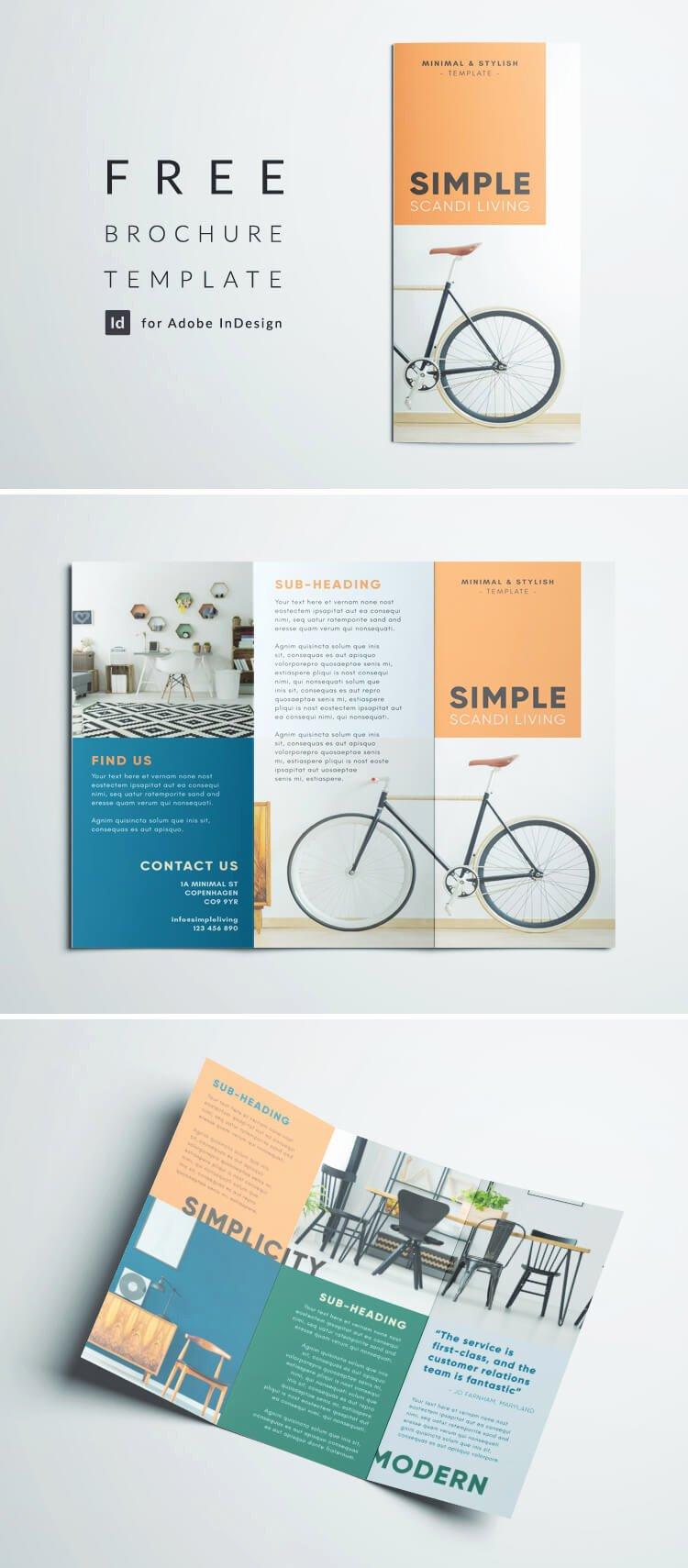 Simple Tri Fold Brochure