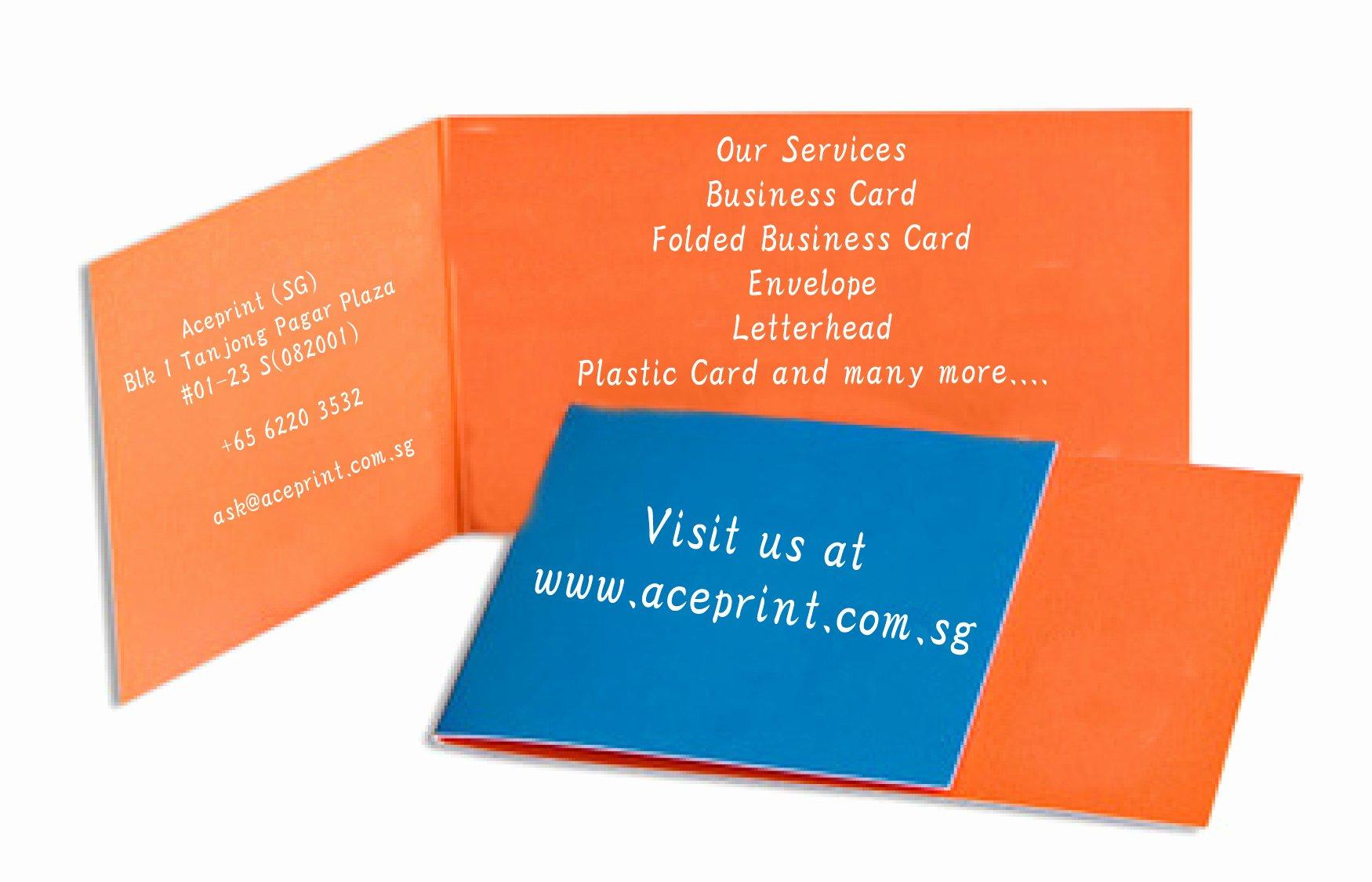 Singapore Printing Service Aceprint
