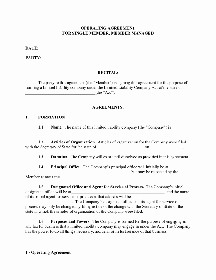 Single Member Llc Operating Agreement Template Edit