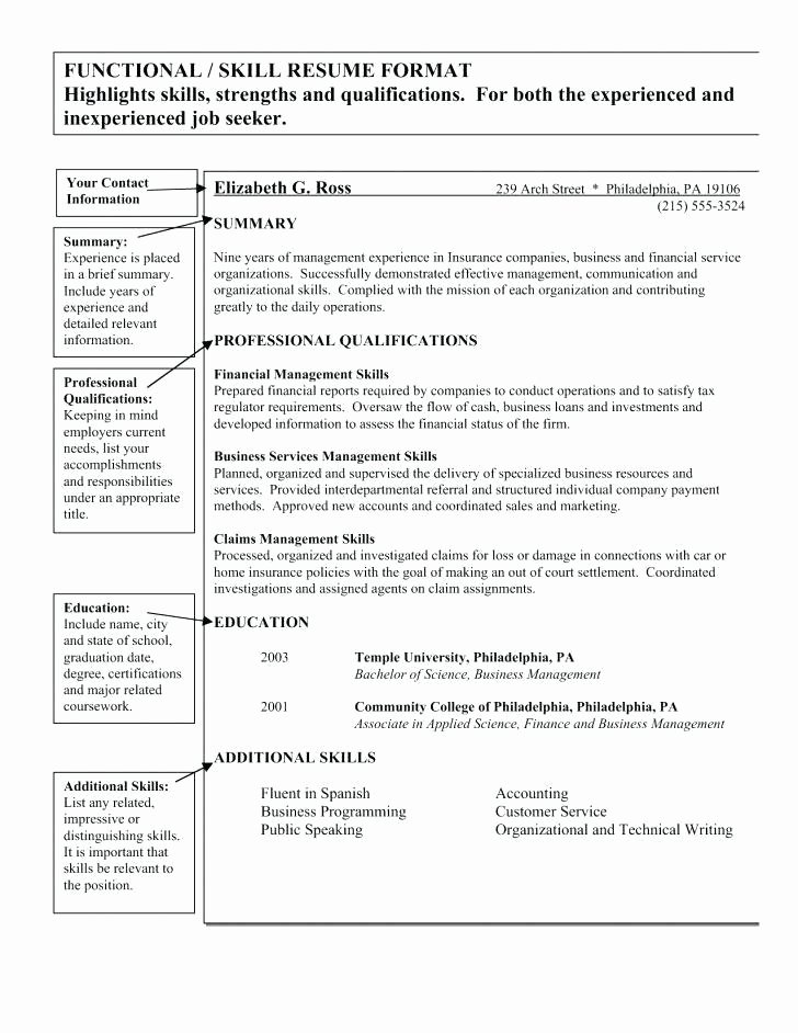 Skill Set Resume Template