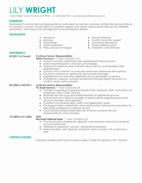 Skills Based Resume Template for Microsoft Word