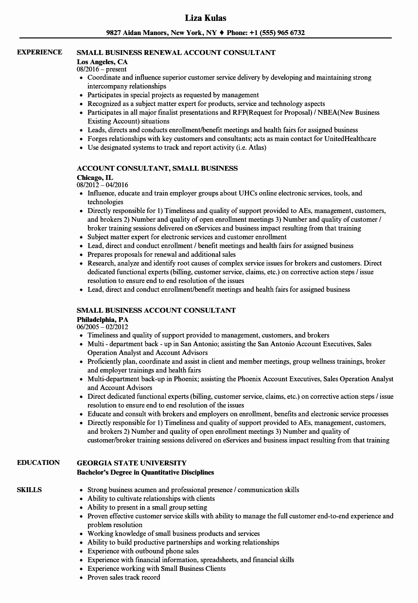 Small Business Consultant Resume Samples