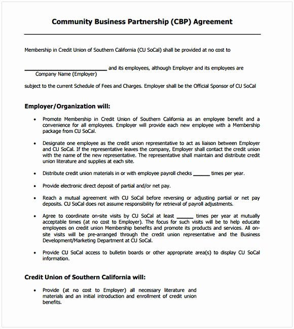 Small Business Partnership Agreement