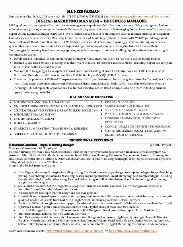 Social Media Marketing Manager Resume Data Entry Work at