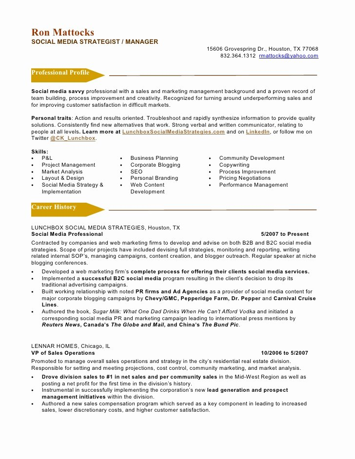 Social Media Marketing Resume Latter Example Template Jpg 728x942 Director Examples